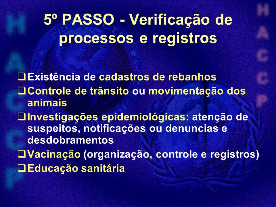 5º PASSO - Verificação de processos e registros Existência de cadastros de rebanhos Controle de trânsito ou movimentação dos animais Investigações epi