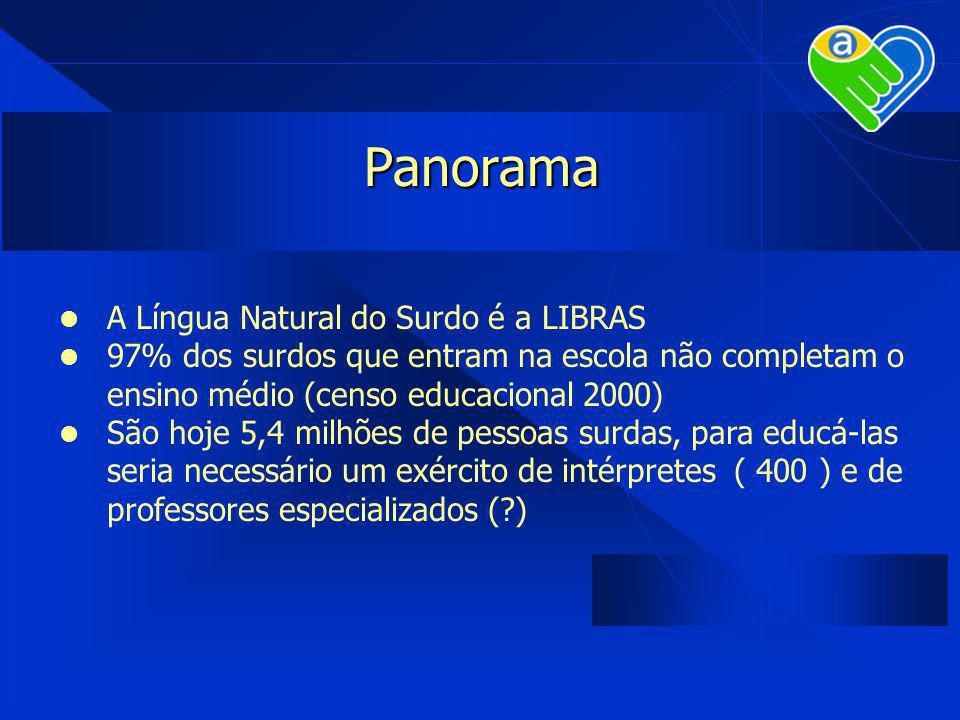 Panorama A Língua Natural do Surdo é a LIBRAS 97% dos surdos que entram na escola não completam o ensino médio (censo educacional 2000) São hoje 5,4 m