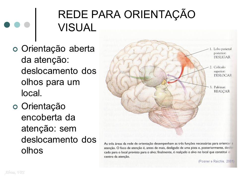 A Experiência Visual na Negligência Escrita Leitura Abreu, VPS