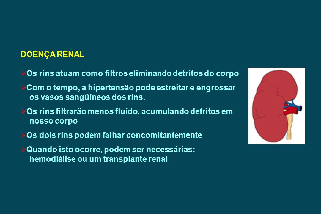 DOENÇA RENAL Os rins atuam como filtros eliminando detritos do corpo Com o tempo, a hipertensão pode estreitar e engrossar os vasos sangüíneos dos rin