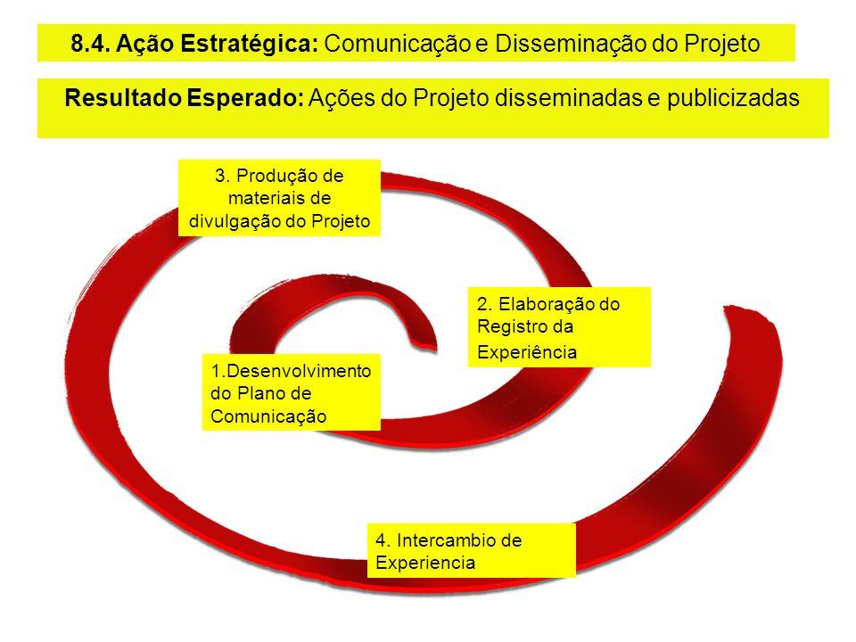 3. Produção de materiais de divulgação do Projeto 1.Desenvolvimento do Plano de Comunicação 2. Elaboração do Registro da Experiência 8.4. Ação Estraté