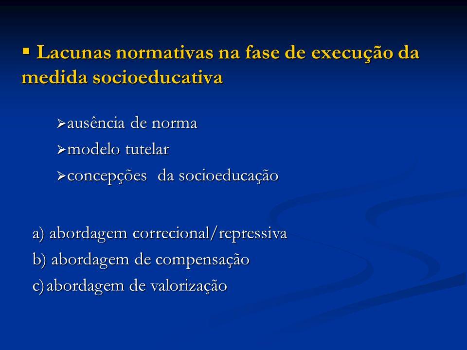 Lacunas normativas na fase de execução da medida socioeducativa Lacunas normativas na fase de execução da medida socioeducativa ausência de norma ausê