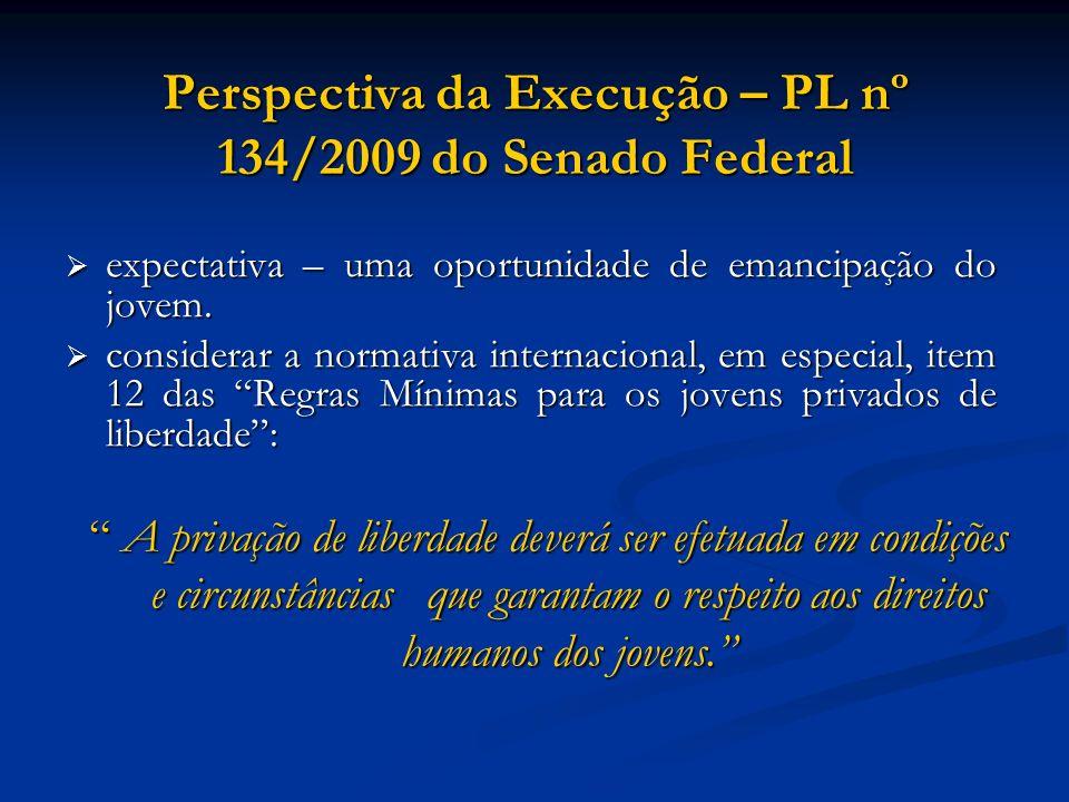 Perspectiva da Execução – PL nº 134/2009 do Senado Federal expectativa – uma oportunidade de emancipação do jovem. expectativa – uma oportunidade de e