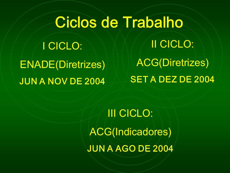 Ciclos de Trabalho I CICLO: ENADE(Diretrizes) JUN A NOV DE 2004 II CICLO: ACG(Diretrizes) SET A DEZ DE 2004 III CICLO: ACG(Indicadores) JUN A AGO DE 2