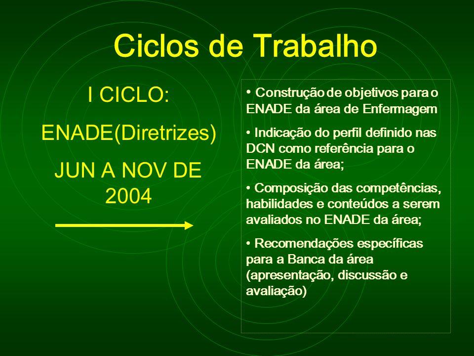 Ciclos de Trabalho I CICLO: ENADE(Diretrizes) JUN A NOV DE 2004 Construção de objetivos para o ENADE da área de Enfermagem Indicação do perfil definid
