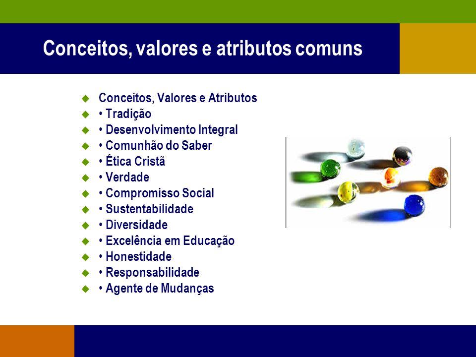 Princípios comuns às IES Comunitárias cooperação competência agilidade criatividade transparência ética