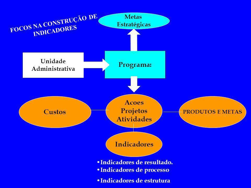 Metas Estratégicas Programa: Unidade Administrativa Custos Acoes Projetos Atividades PRODUTOS E METAS Indicadores FOCOS NA CONSTRUÇÃO DE INDICADORES I