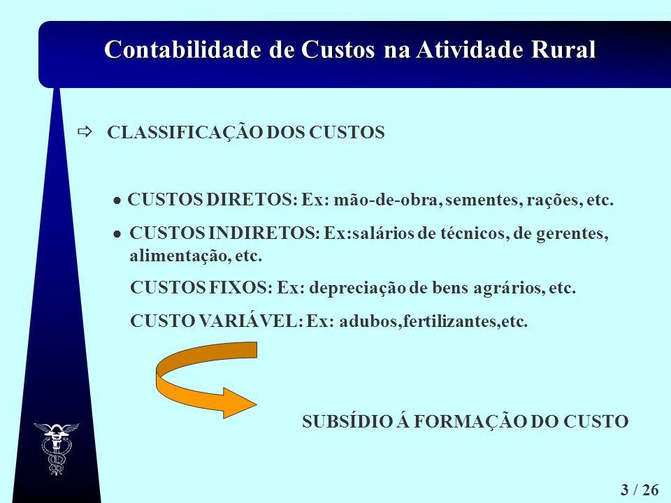 Contabilidade de Custos na Atividade Rural 3 / 26 CLASSIFICAÇÃO DOS CUSTOS CUSTOS DIRETOS: Ex: mão-de-obra, sementes, rações, etc. CUSTOS INDIRETOS: E