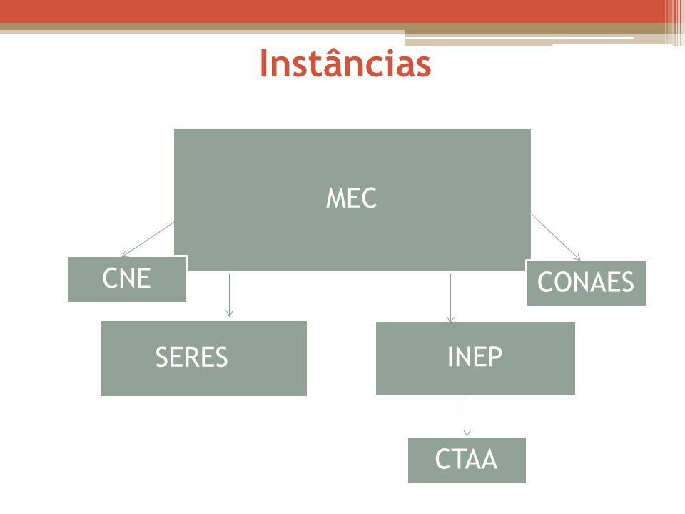 MEC SERES INEP CNE CTAA CONAES Instâncias