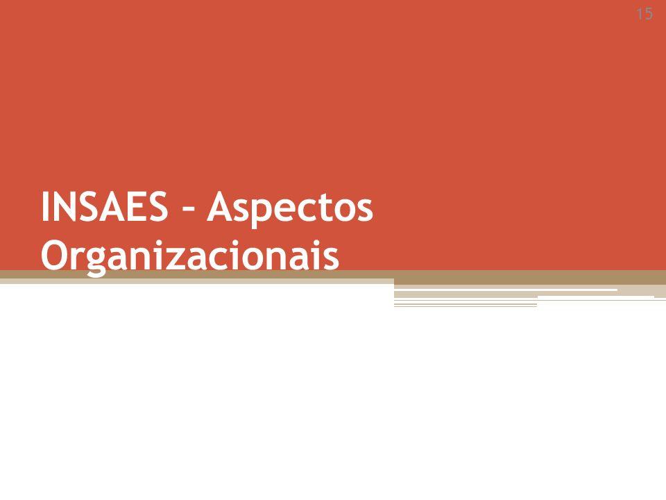 15 INSAES – Aspectos Organizacionais