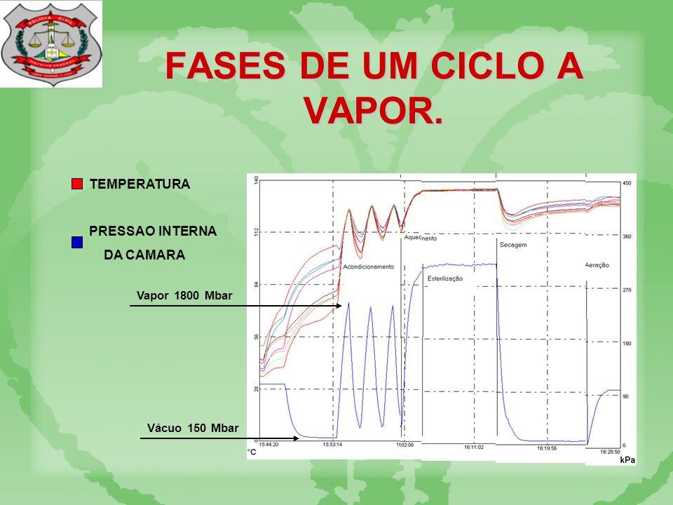 FASES DE UM CICLO A VAPOR. TEMPERATURA PRESSAO INTERNA DA CAMARA Vácuo 150 Mbar Vapor 1800 Mbar