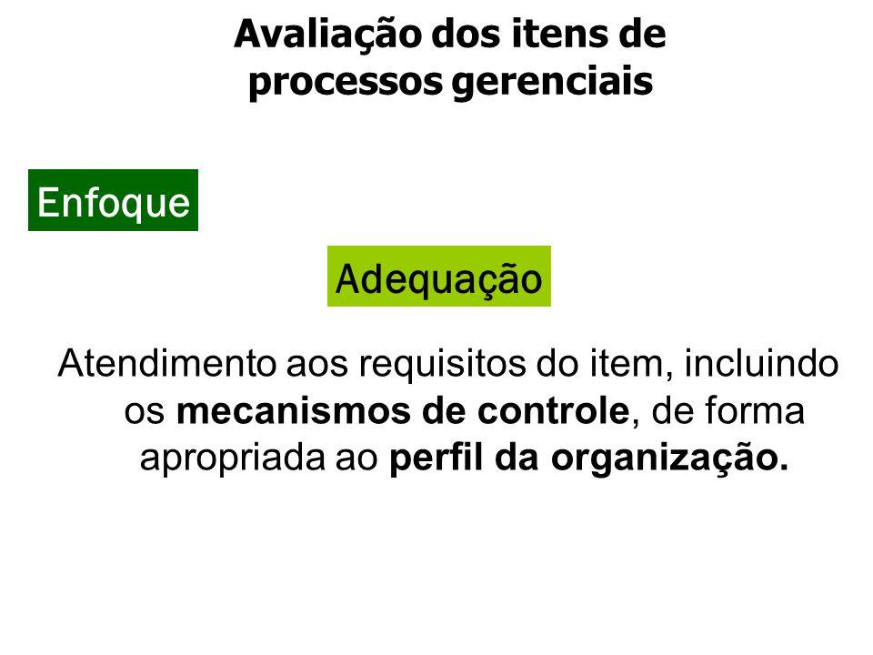 Atendimento aos requisitos do item, incluindo os mecanismos de controle, de forma apropriada ao perfil da organização. Adequação Enfoque Avaliação dos