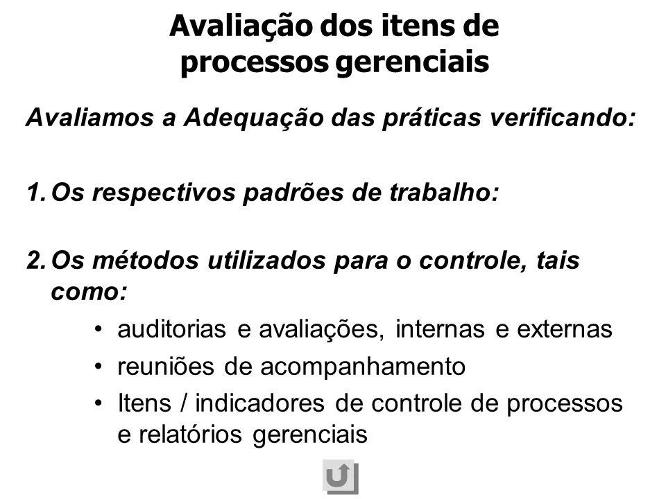 Avaliamos a Adequação das práticas verificando: 1.Os respectivos padrões de trabalho: 2.Os métodos utilizados para o controle, tais como: auditorias e