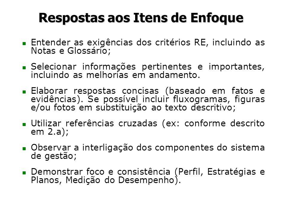 Respostas aos Itens de Enfoque n Entender as exigências dos critérios RE, incluindo as Notas e Glossário; n Selecionar informações pertinentes e impor