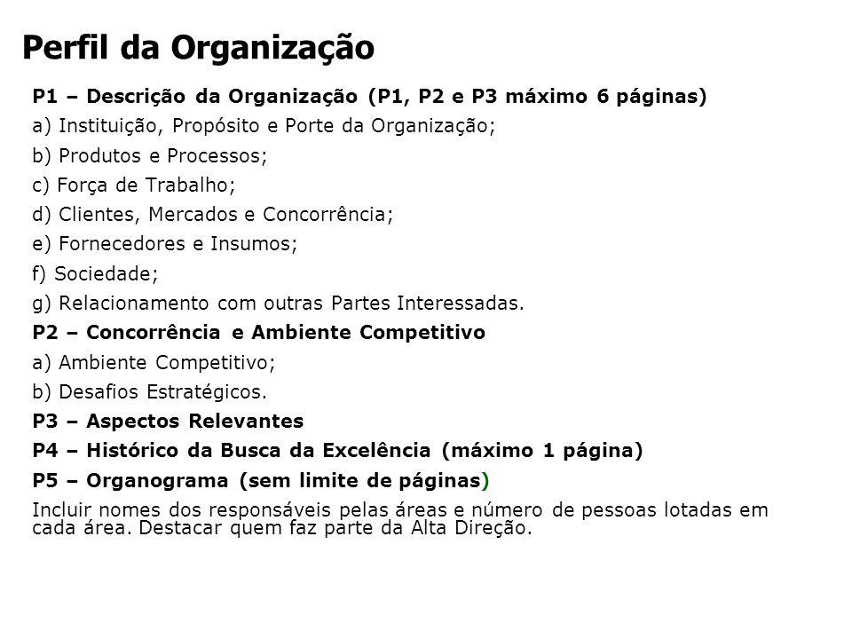 P1 – Descrição da Organização (P1, P2 e P3 máximo 6 páginas) a) Instituição, Propósito e Porte da Organização; b) Produtos e Processos; c) Força de Tr