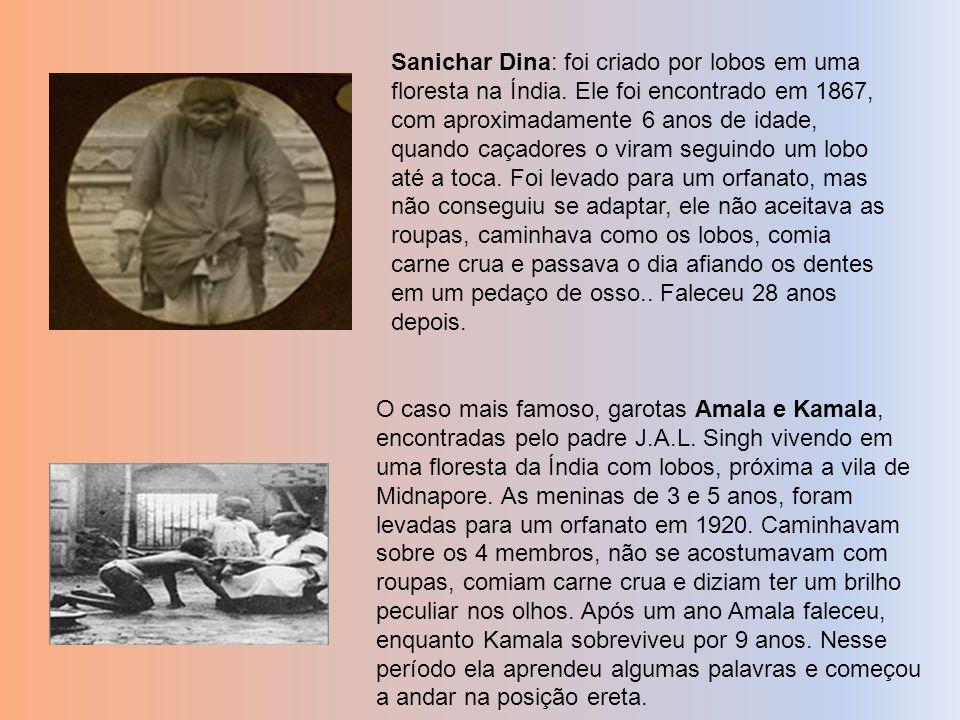 . Sanichar Dina: foi criado por lobos em uma floresta na Índia. Ele foi encontrado em 1867, com aproximadamente 6 anos de idade, quando caçadores o vi