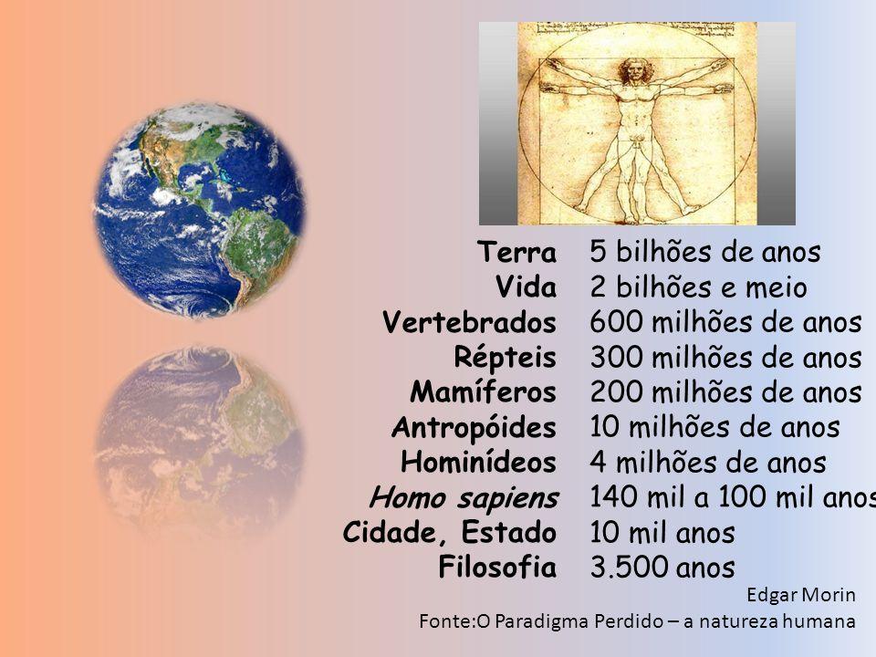 Edgar Morin Fonte:O Paradigma Perdido – a natureza humana Terra Vida Vertebrados Répteis Mamíferos Antropóides Hominídeos Homo sapiens Cidade, Estado