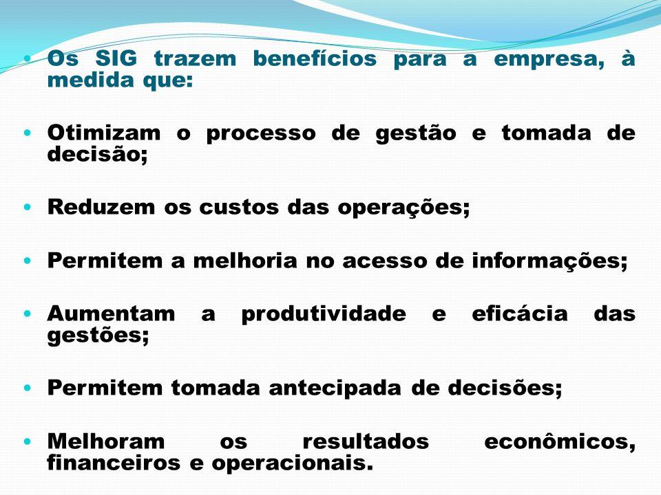 Os SIG trazem benefícios para a empresa, à medida que: Otimizam o processo de gestão e tomada de decisão; Reduzem os custos das operações; Permitem a