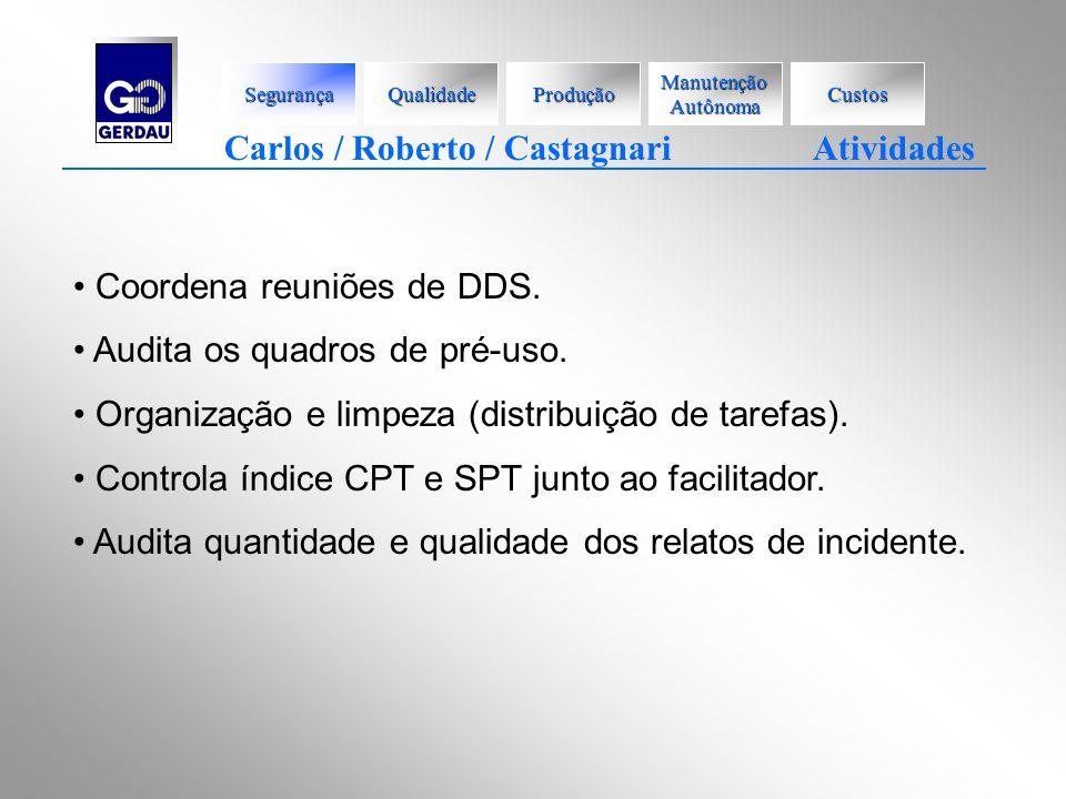 Carlos / Roberto / Castagnari Atividades Coordena reuniões de DDS. Audita os quadros de pré-uso. Organização e limpeza (distribuição de tarefas). Cont