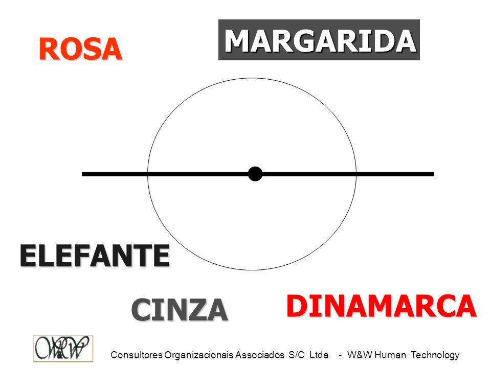 Consultores Organizacionais Associados S/C Ltda - W&W Human Technology.