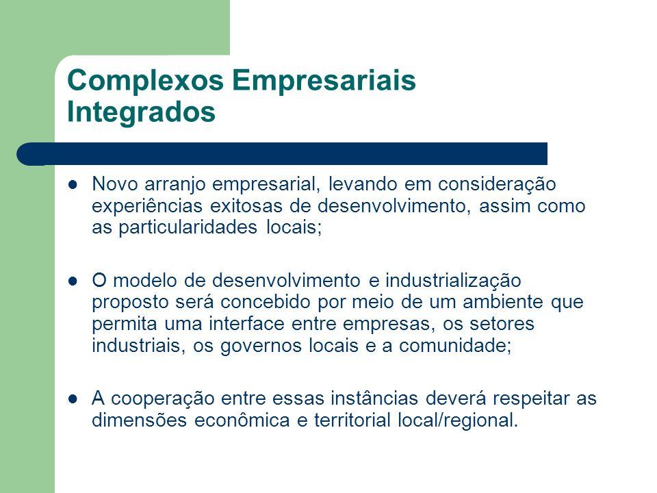 Complexos Empresariais Integrados Novo arranjo empresarial, levando em consideração experiências exitosas de desenvolvimento, assim como as particular