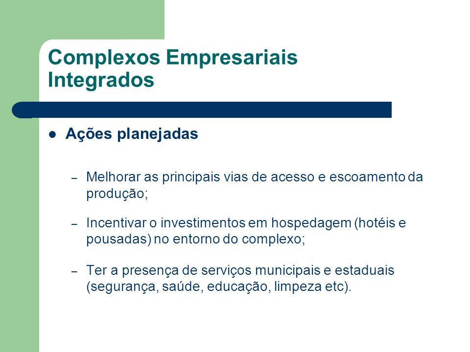 Complexos Empresariais Integrados Ações planejadas – Melhorar as principais vias de acesso e escoamento da produção; – Incentivar o investimentos em h