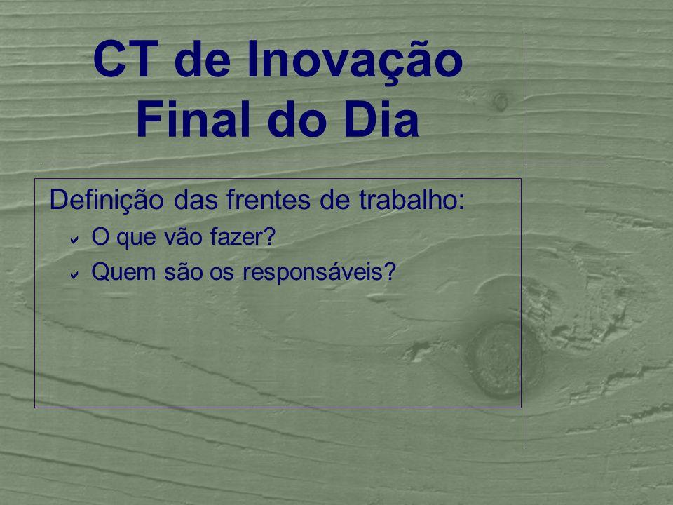 CT de Inovação Final do Dia Definição das frentes de trabalho: O que vão fazer.