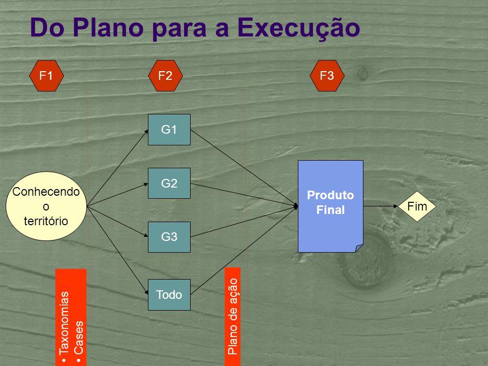 Do Plano para a Execução Plano de ação Produto Final Todo G1 Conhecendo o território Fim G2 G3 F1F2F3 Taxonomias Cases