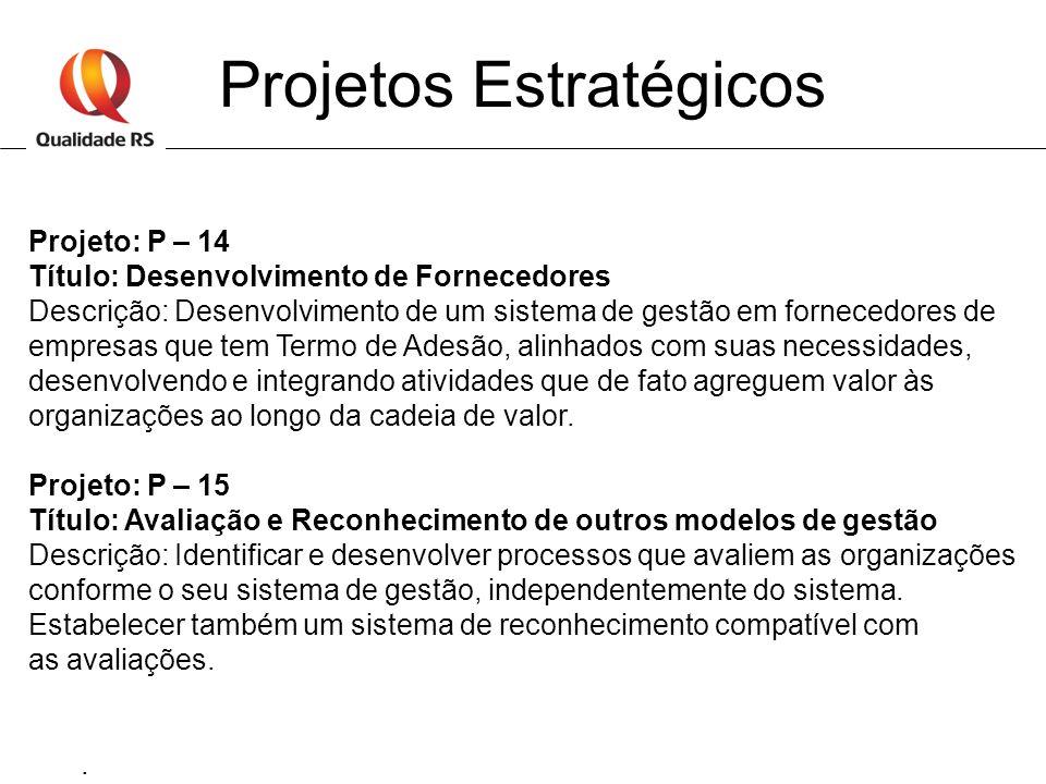 Projetos Estratégicos Projeto: P – 14 Título: Desenvolvimento de Fornecedores Descrição: Desenvolvimento de um sistema de gestão em fornecedores de em