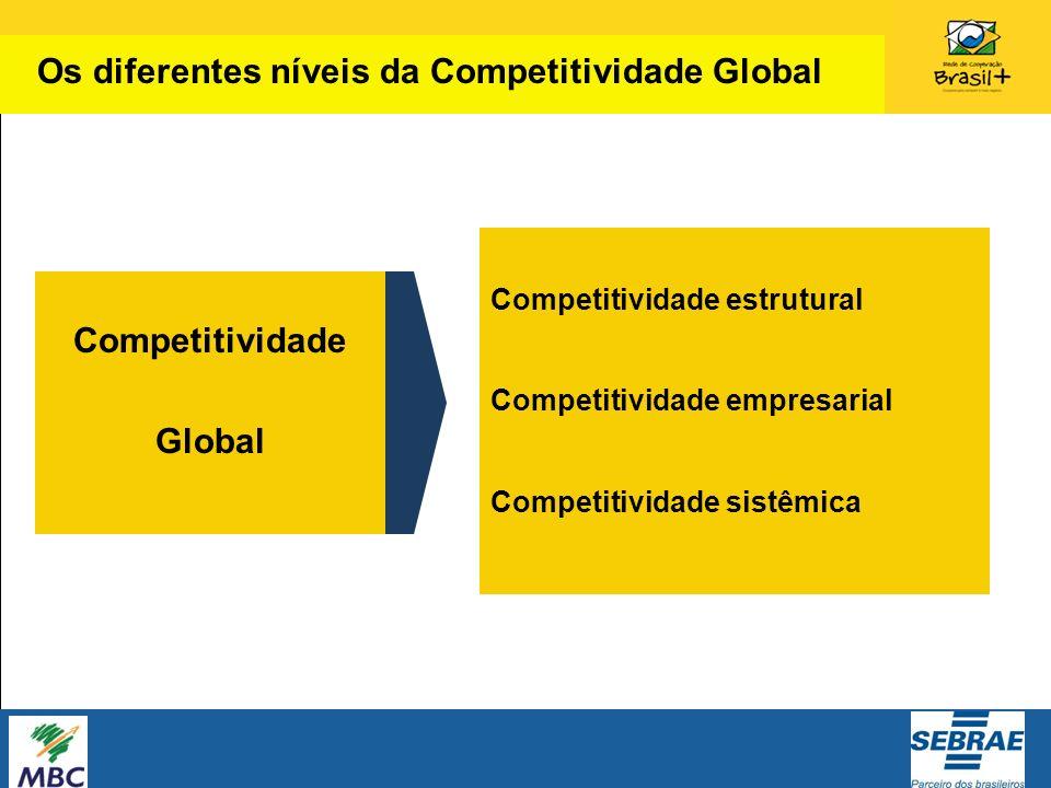 Competitividade estrutural Competitividade empresarial Competitividade sistêmica Competitividade Global Os diferentes níveis da Competitividade Global
