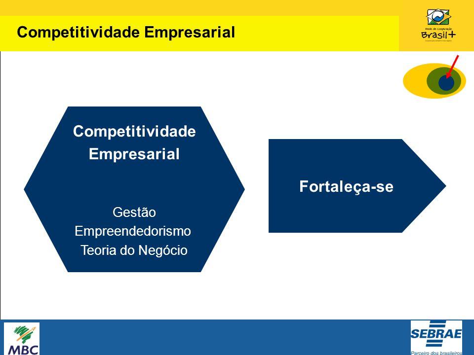 Competitividade Empresarial Gestão Empreendedorismo Teoria do Negócio Fortaleça-se Competitividade Empresarial