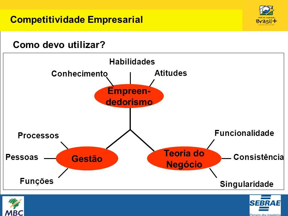 Como devo utilizar? Competitividade Empresarial Gestão Teoria do Negócio Empreen- dedorismo Conhecimento Habilidades Atitudes Processos Pessoas Funçõe