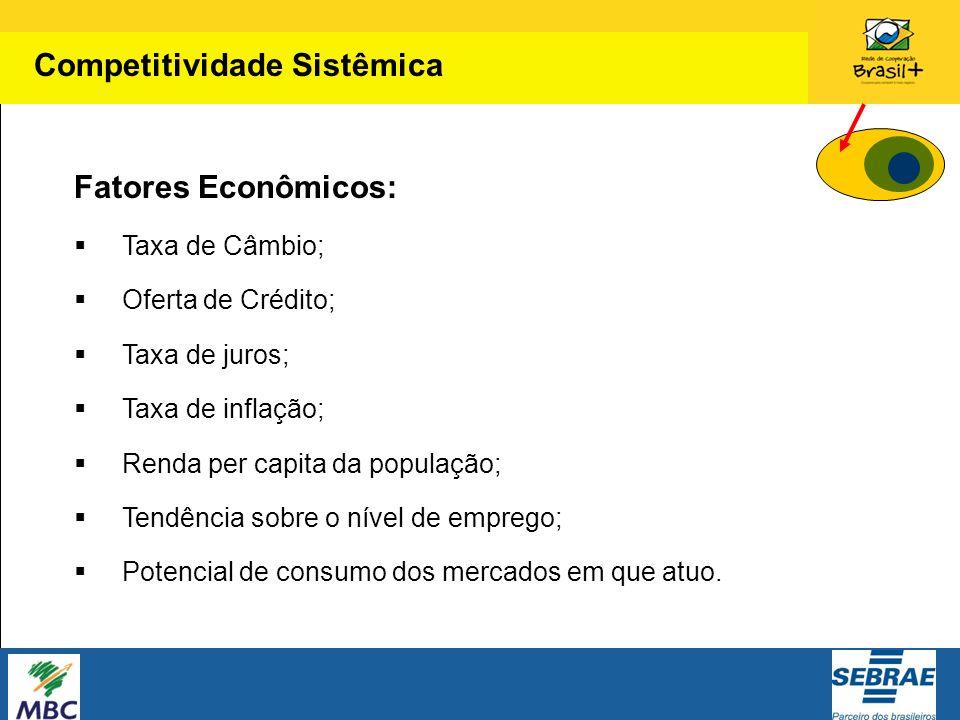 Fatores Econômicos: Taxa de Câmbio; Oferta de Crédito; Taxa de juros; Taxa de inflação; Renda per capita da população; Tendência sobre o nível de empr