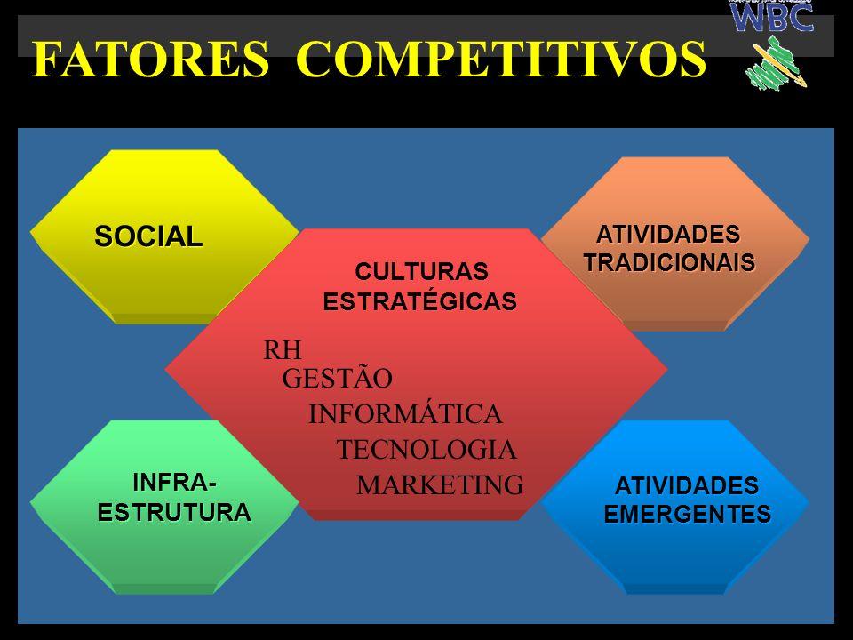 SOCIAL ATIVIDADES TRADICIONAIS ATIVIDADES TRADICIONAIS CULTURAS ESTRATÉGICAS CULTURAS ESTRATÉGICAS ATIVIDADES EMERGENTES ATIVIDADES EMERGENTES INFRA- ESTRUTURA INFRA- ESTRUTURA FATORES COMPETITIVOS GESTÃO MARKETING INFORMÁTICA RH TECNOLOGIA