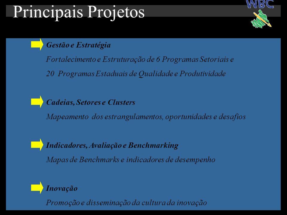 Gestão e Estratégia Fortalecimento e Estruturação de 6 Programas Setoriais e 20 Programas Estaduais de Qualidade e Produtividade Cadeias, Setores e Clusters Mapeamento dos estrangulamentos, oportunidades e desafios Indicadores, Avaliação e Benchmarking Mapas de Benchmarks e indicadores de desempenho Inovação Promoção e disseminação da cultura da inovação Principais Projetos