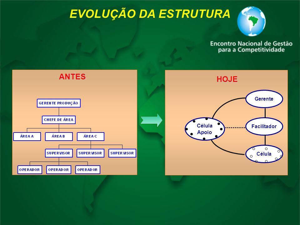 EVOLUÇÃO DA ESTRUTURA Gerente Facilitador Célula Apoio HOJEANTES