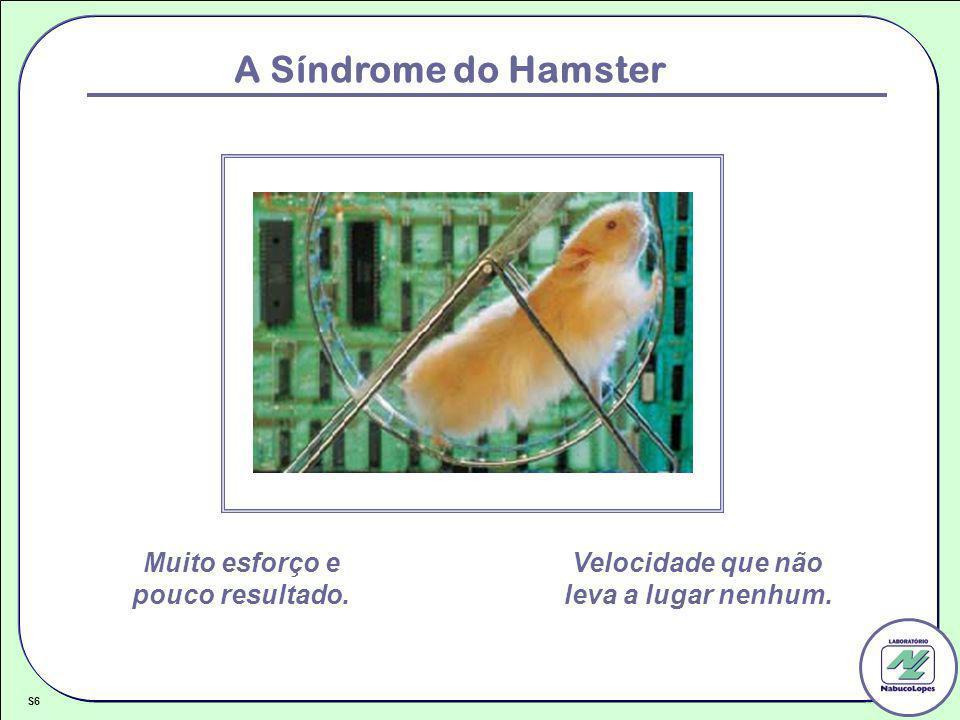 A Síndrome do Hamster S6 Muito esforço e pouco resultado. Velocidade que não leva a lugar nenhum.