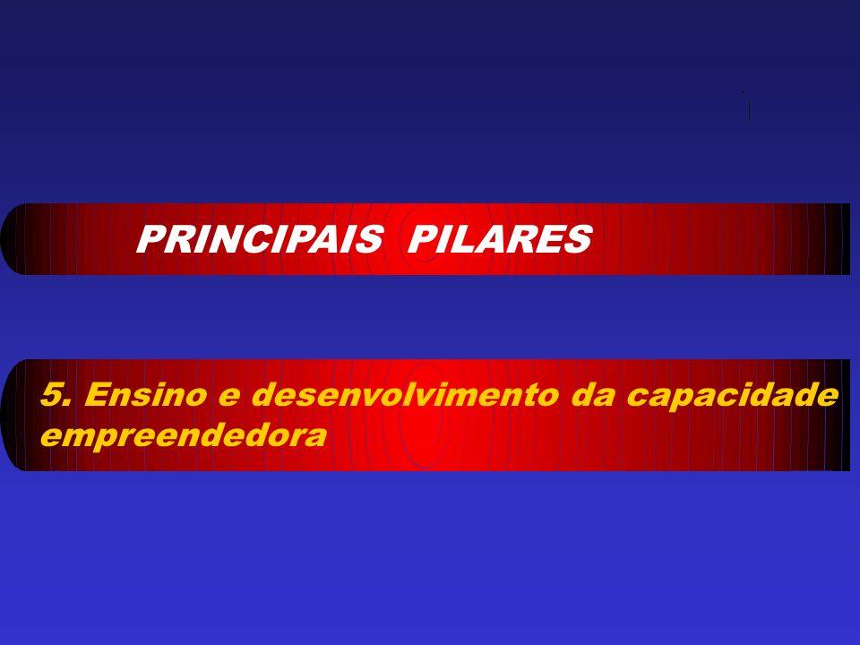PRINCIPAIS PILARES 5. Ensino e desenvolvimento da capacidade empreendedora