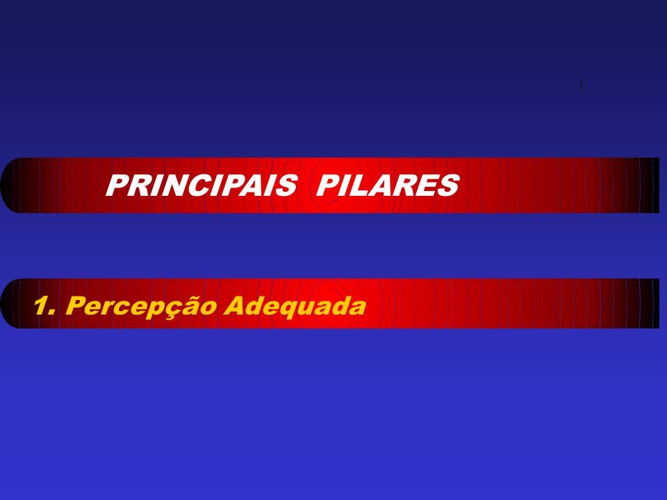 PRINCIPAIS PILARES 1. Percepção Adequada