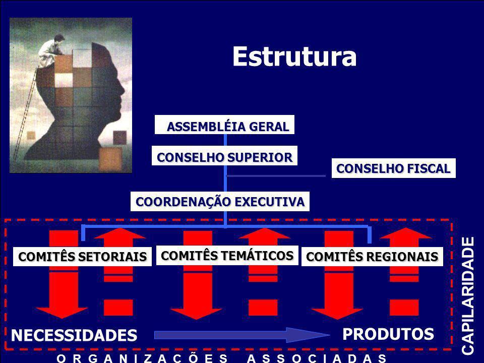Estrutura ASSEMBLÉIA GERAL ASSEMBLÉIA GERAL CONSELHO SUPERIOR CONSELHO FISCAL COORDENAÇÃO EXECUTIVA PRODUTOS NECESSIDADES CAPILARIDADE COMITÊS TEMÁTIC