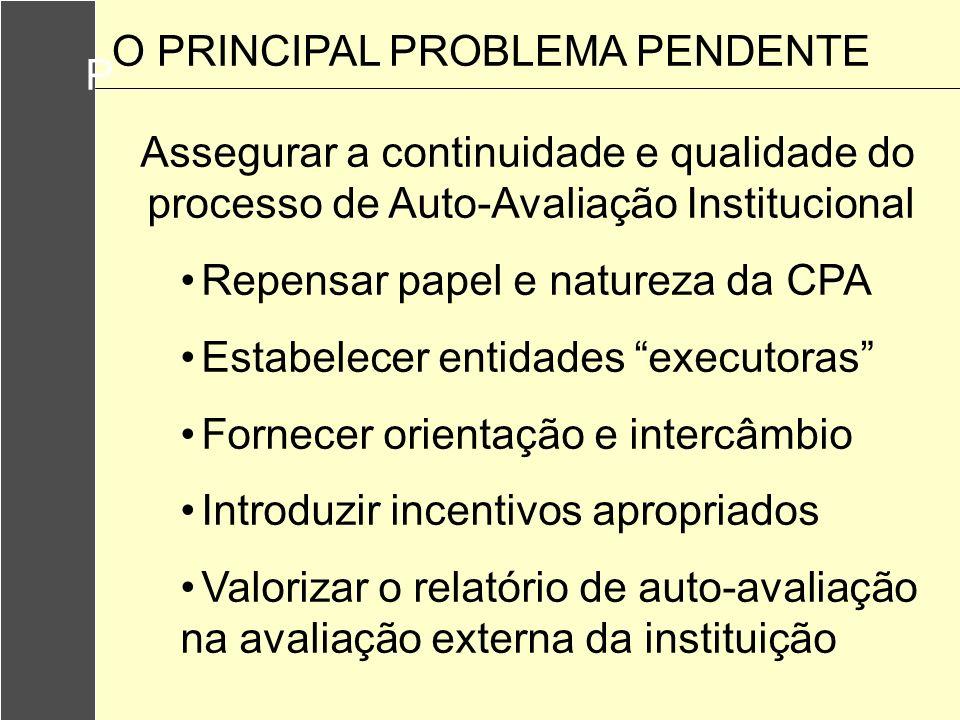 P Assegurar a continuidade e qualidade do processo de Auto-Avaliação Institucional Repensar papel e natureza da CPA Estabelecer entidades executoras F