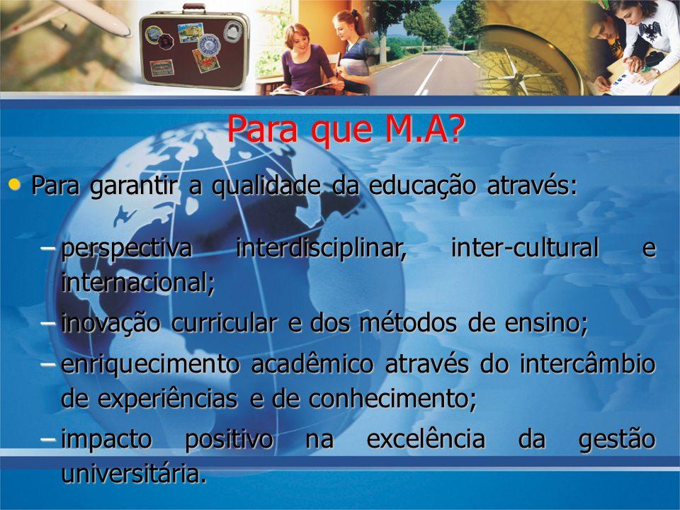 Para que M.A? Para garantir a qualidade da educação através: Para garantir a qualidade da educação através: –perspectiva interdisciplinar, inter-cultu