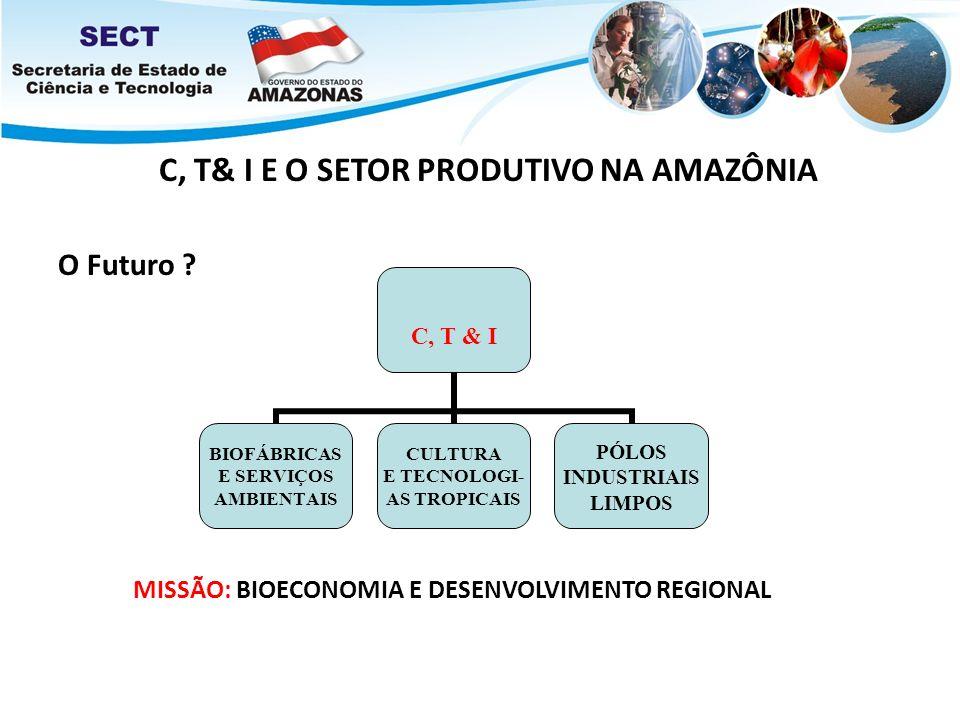 C, T& I E O SETOR PRODUTIVO NA AMAZÔNIA O Futuro ? C, T & I BIOFÁBRICASE SERVIÇOS AMBIENTAIS CULTURA E TECNOLOGI- AS TROPICAIS PÓLOS INDUSTRIAIS LIMPO