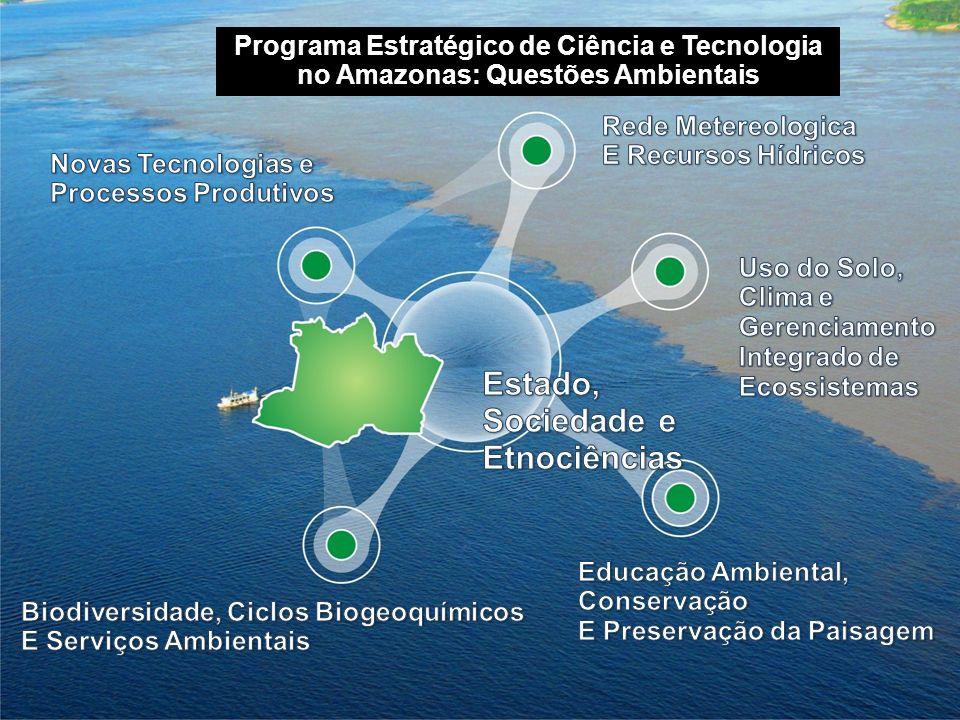 Programa Estratégico de Ciência e Tecnologia no Amazonas: Questões Ambientais
