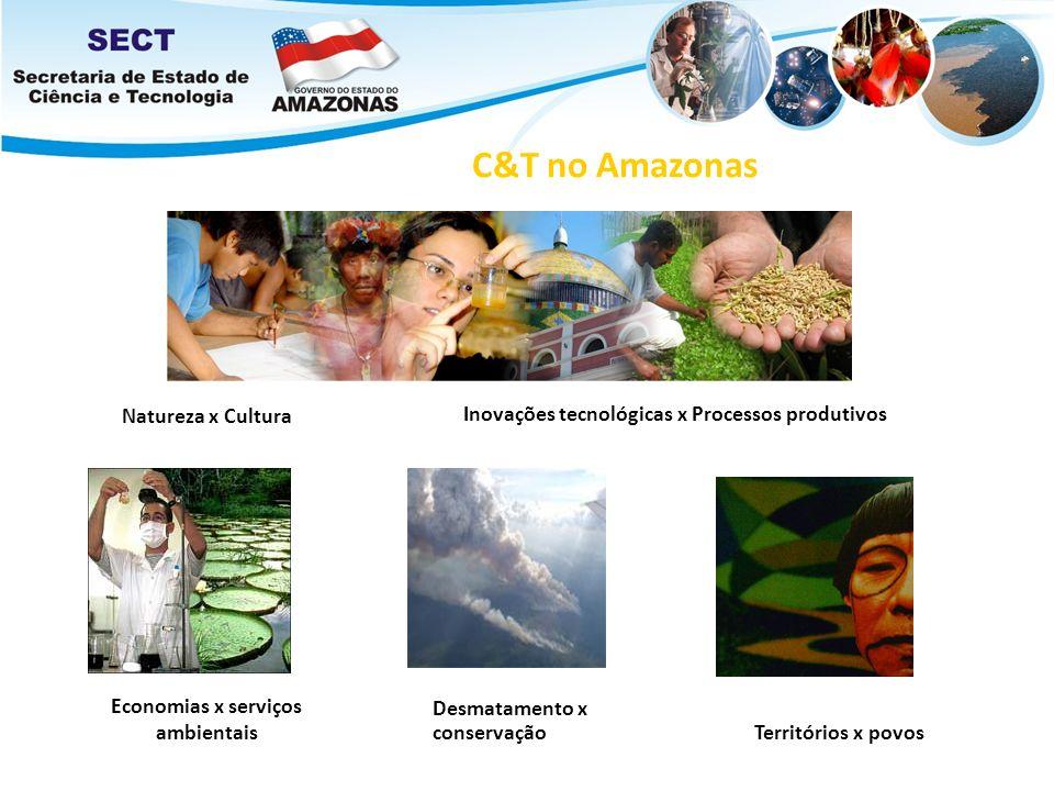 Inovações tecnológicas x Processos produtivos Economias x serviços ambientais Territórios x povos Natureza x Cultura Desmatamento x conservação C&T no