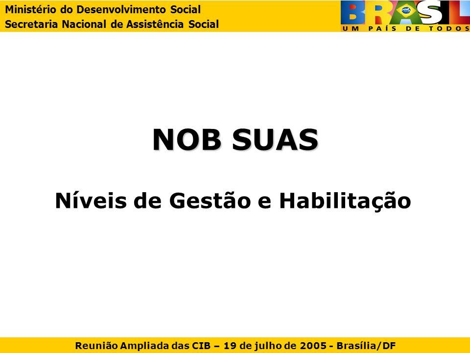 Níveis de Gestão Município: Gestão Inicial Gestão Básica Gestão Plena Gestão do Distrito Federal Gestão Estadual Ministério do Desenvolvimento Social Secretaria Nacional de Assistência Social Reunião Ampliada das CIB – 19 de julho de 2005 - Brasília/DF