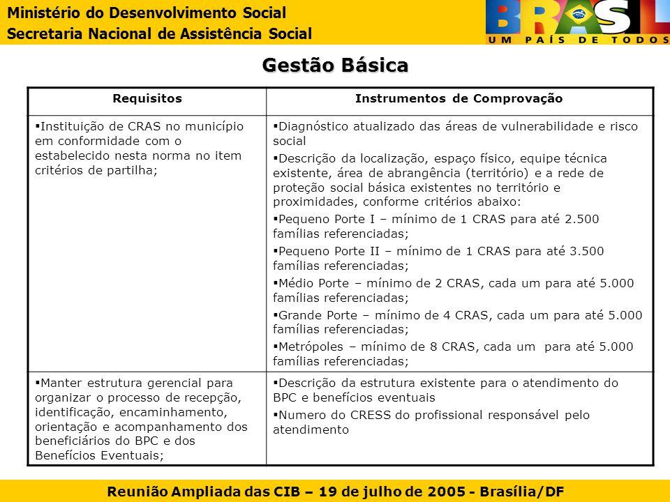 Gestão Básica Ministério do Desenvolvimento Social Secretaria Nacional de Assistência Social Reunião Ampliada das CIB – 19 de julho de 2005 - Brasília