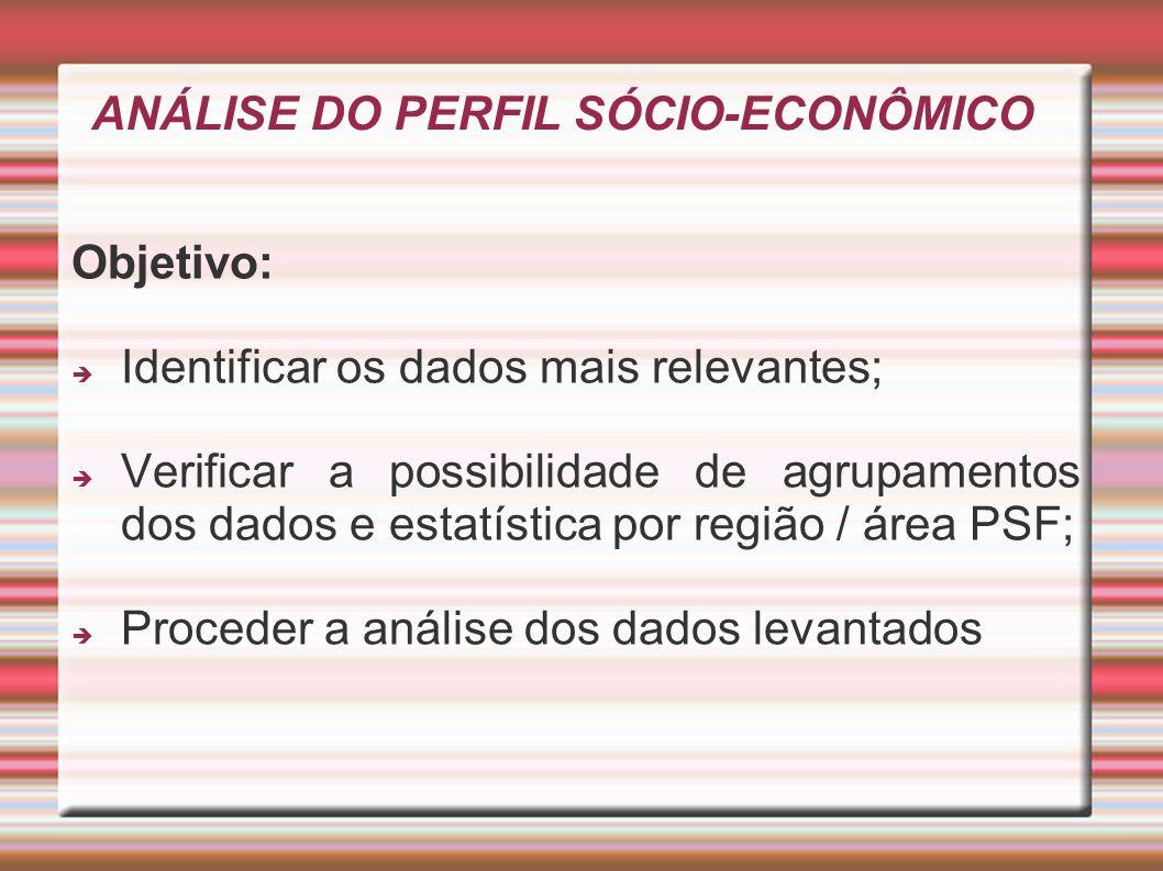 ANÁLISE DO PERFIL SÓCIO-ECONÔMICO Objetivo: Identificar os dados mais relevantes; Verificar a possibilidade de agrupamentos dos dados e estatística po