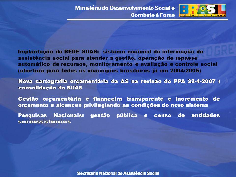 Ministério do Desenvolvimento Social e Combate à Fome Secretaria Nacional de Assistência Social Implantação da REDE SUAS: sistema nacional de informaç