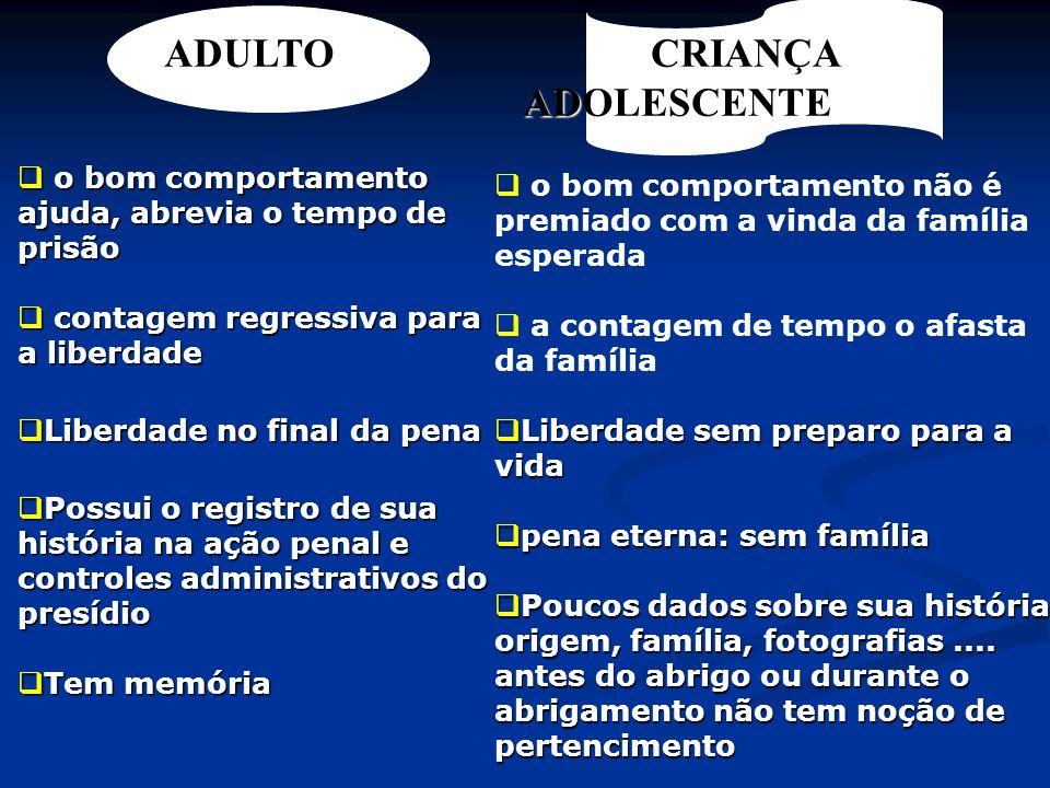 MEDIDAS PROTETIVAS ART.101 I - encaminhamento aos pais ou responsável.....; I - encaminhamento aos pais ou responsável.....; II - orientação, apoio e acompanhamento temporários; II - orientação, apoio e acompanhamento temporários; III - matrícula e freqüência.......